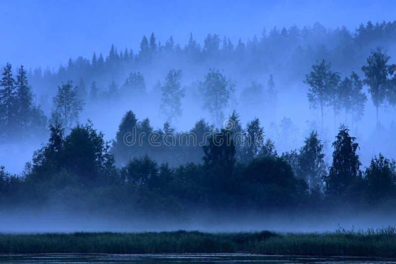 蓝色芬兰晚上 库存图片