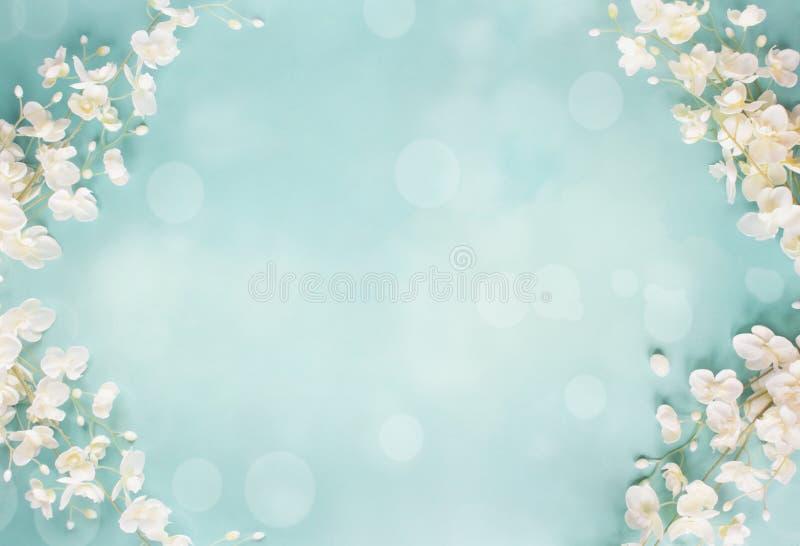 蓝色花卉Bokeh春天背景 免版税库存图片