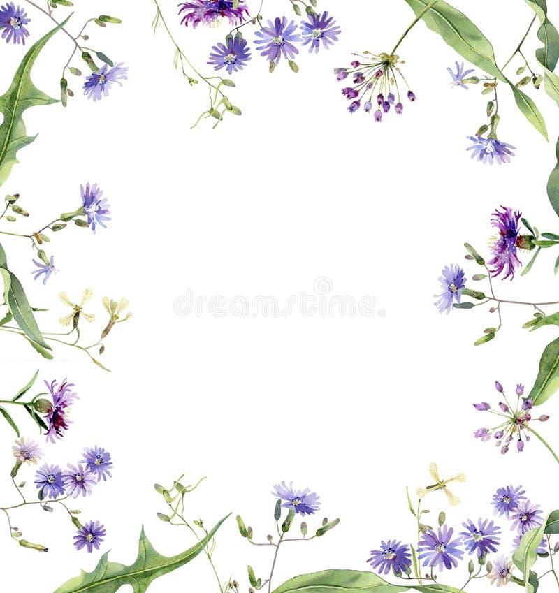 蓝色花方形的水彩框架  向量例证