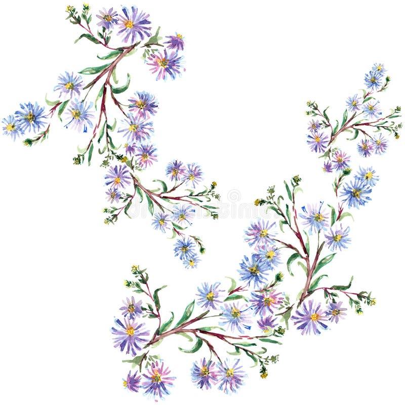 蓝色花,水彩 库存例证