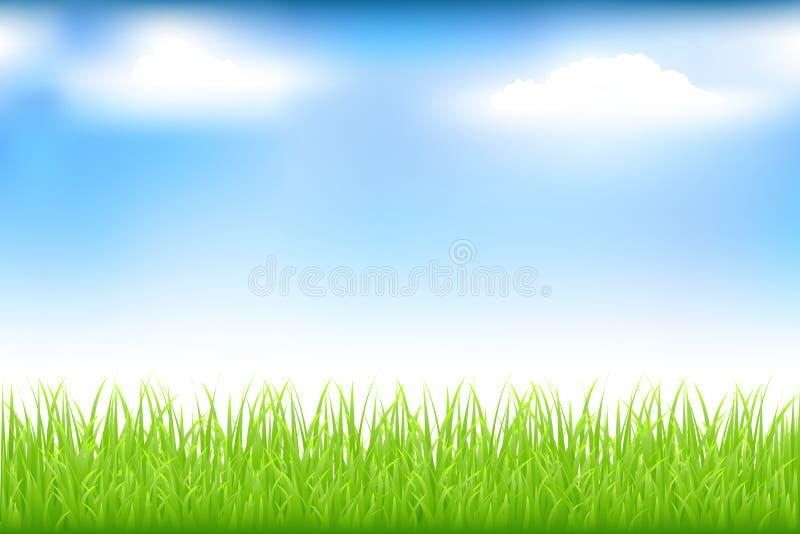 蓝色草绿色天空向量 皇族释放例证