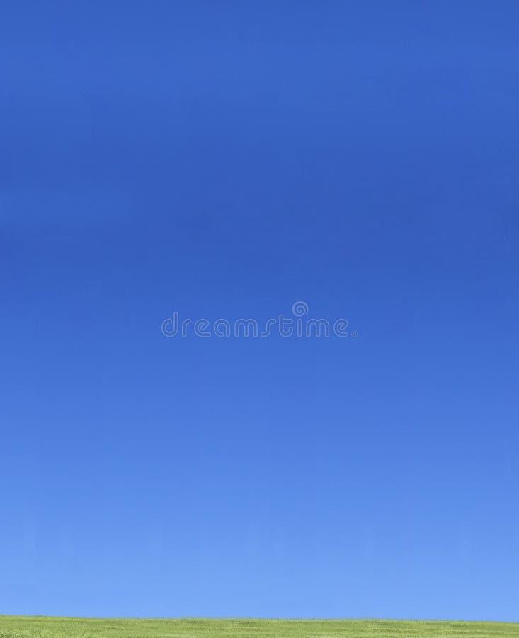 蓝色草绿色天空 库存照片