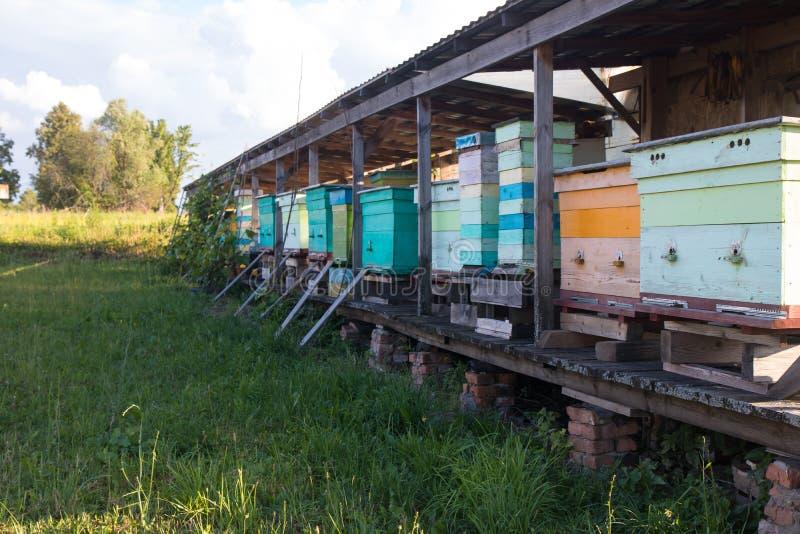 蓝色蓝色和橙色蜂箱在农业的夏天农场与蓝天 免版税库存照片