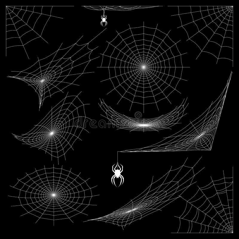 蓝色虚拟蜘蛛色彩万维网 皇族释放例证
