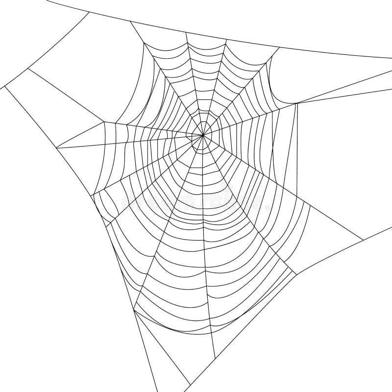 蓝色虚拟蜘蛛色彩万维网 向量例证