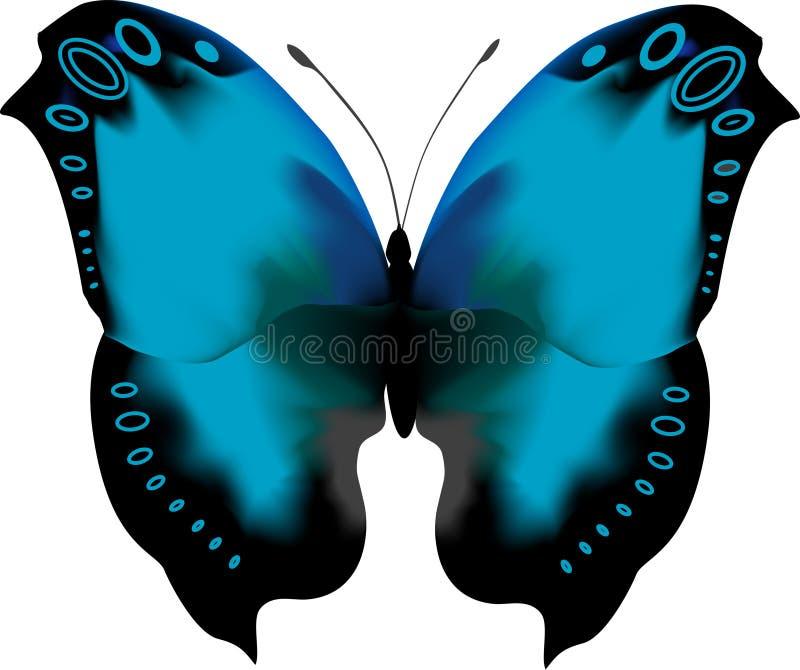 蓝色蝴蝶开放热带翼 向量例证