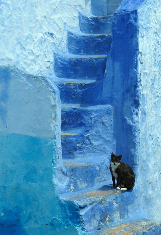 蓝色被绘的房子在摩洛哥 库存照片