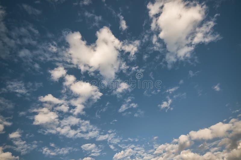 蓝色覆盖蓬松天空 免版税图库摄影