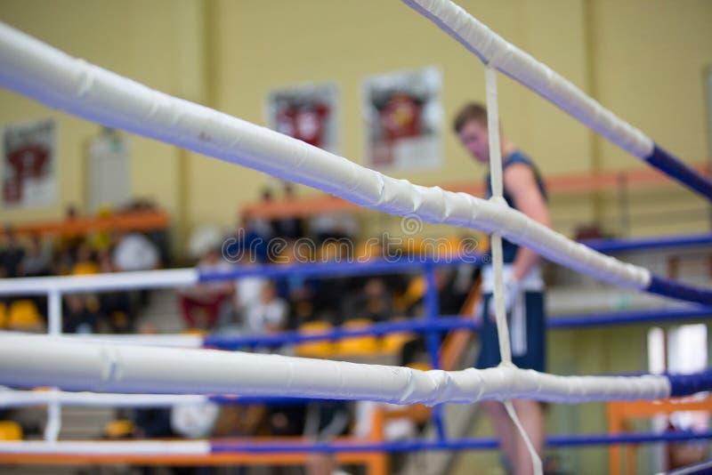 蓝色角落的拳击手 免版税图库摄影