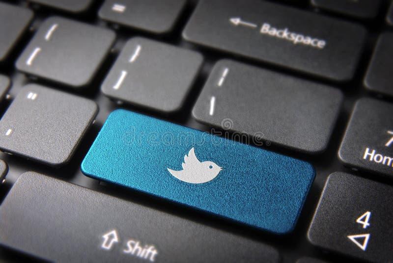 蓝色键盘慌张鸟钥匙,社会网络背景