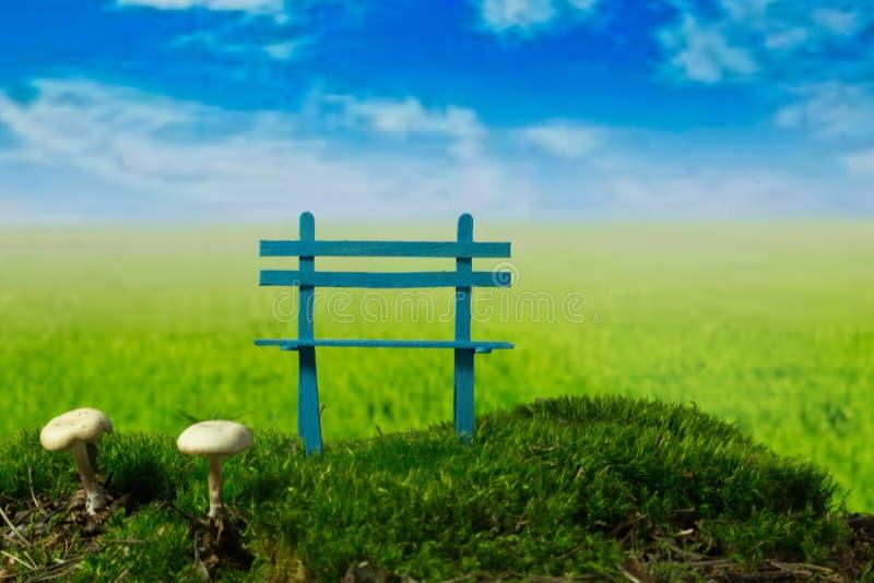 蓝色长凳和蘑菇在绿色草甸晴朗,多云天 库存照片