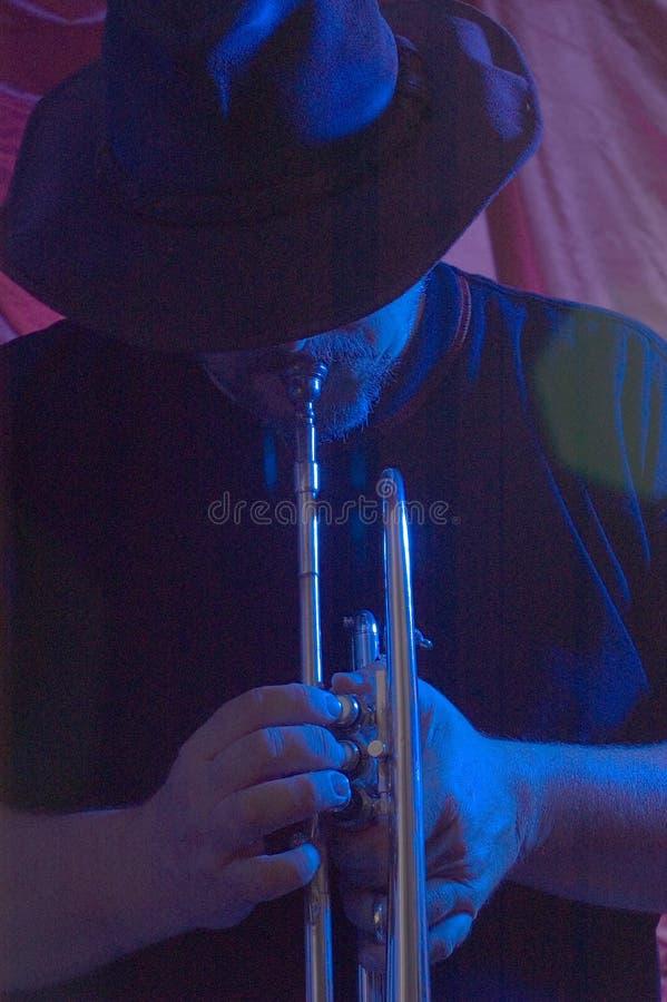 蓝色音乐家 库存照片