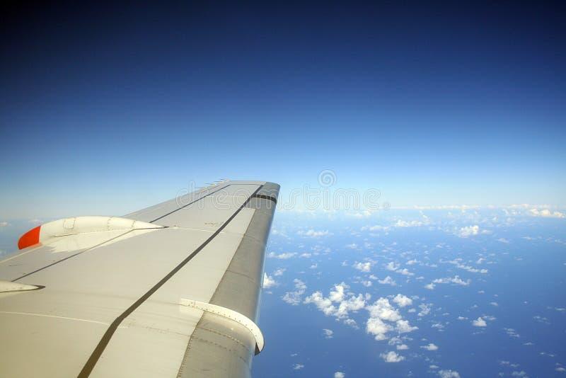 蓝色飞行 库存图片