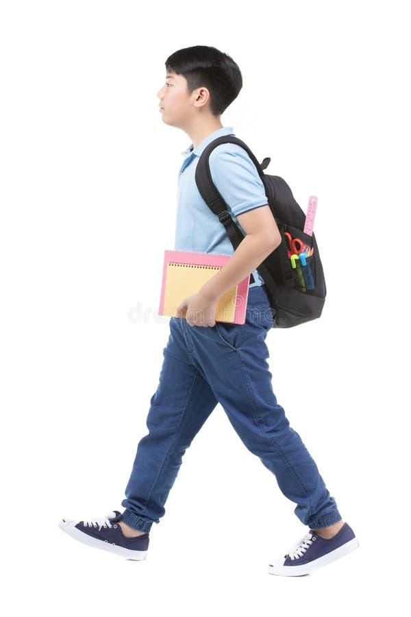 蓝色马球T恤杉的微笑的小学生男孩与书和袋子 图库摄影
