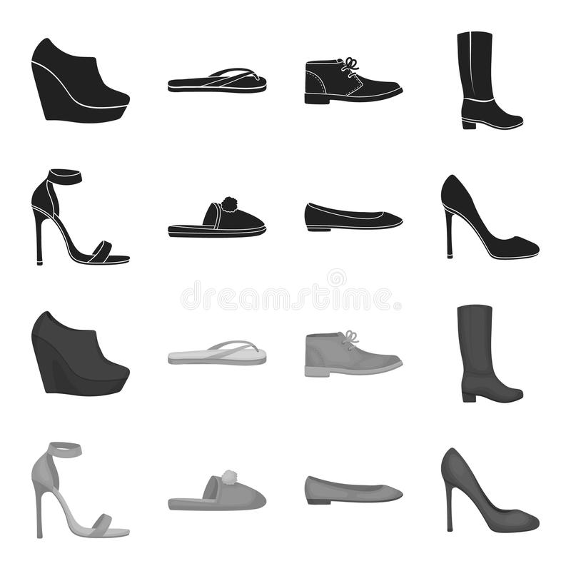 蓝色高跟的凉鞋,有pampon的自创淡紫色拖鞋,桃红色妇女芭蕾舱内甲板,棕色高跟鞋 鞋子 皇族释放例证