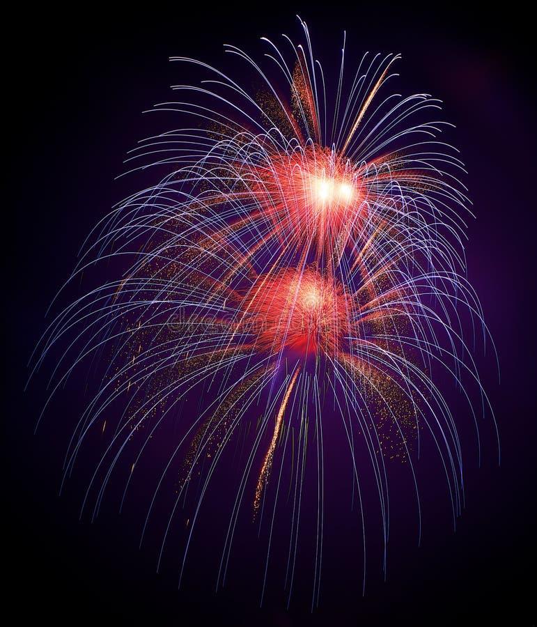 蓝色,紫罗兰色与红色五颜六色的烟花在黑背景中,艺术性的烟花在马耳他,马耳他在黑暗的天空后面的烟花节日 库存照片