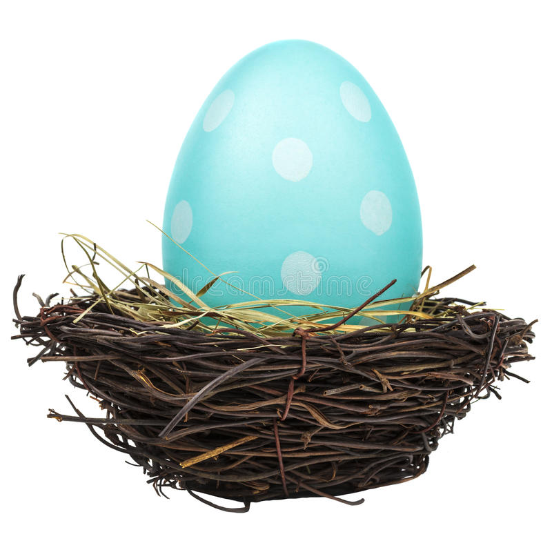 在鸟巢的蓝色大复活节彩蛋在白色 免版税图库摄影