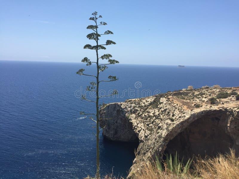 蓝色洞穴 库存图片
