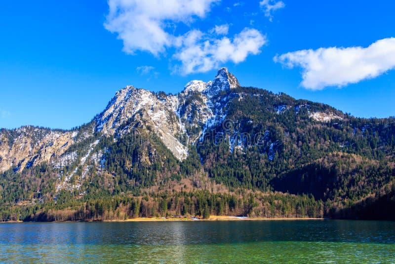蓝色Alpsee湖在绿色森林和美丽的阿尔卑斯山里 巴伐利亚fussen德国 免版税库存图片