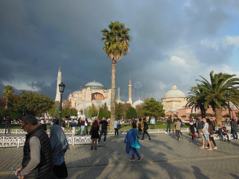蓝色Archaeroligical公园和圣索非亚大教堂博物馆在背景,伊斯坦布尔中 库存图片