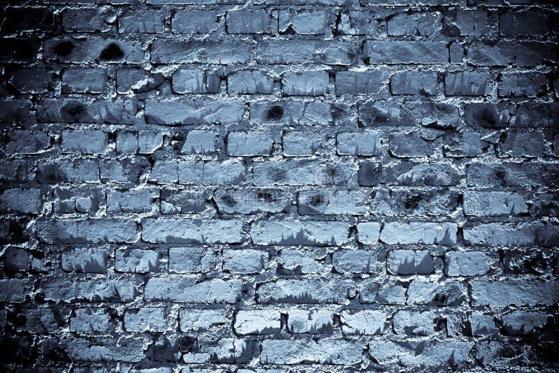 蓝色brickwall 免版税库存照片