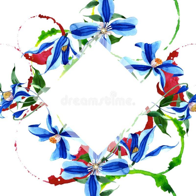 蓝色durandii铁线莲属 花卉植物的花 框架边界装饰品正方形 库存例证