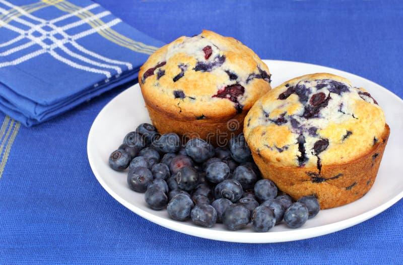 蓝莓健康松饼 库存照片