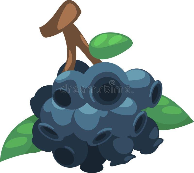 蓝莓向量 库存例证