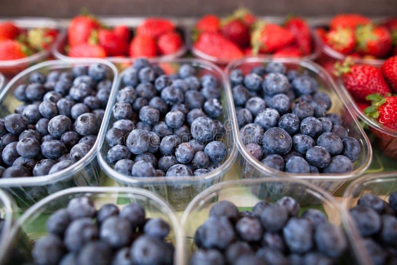 蓝莓和草莓 图库摄影