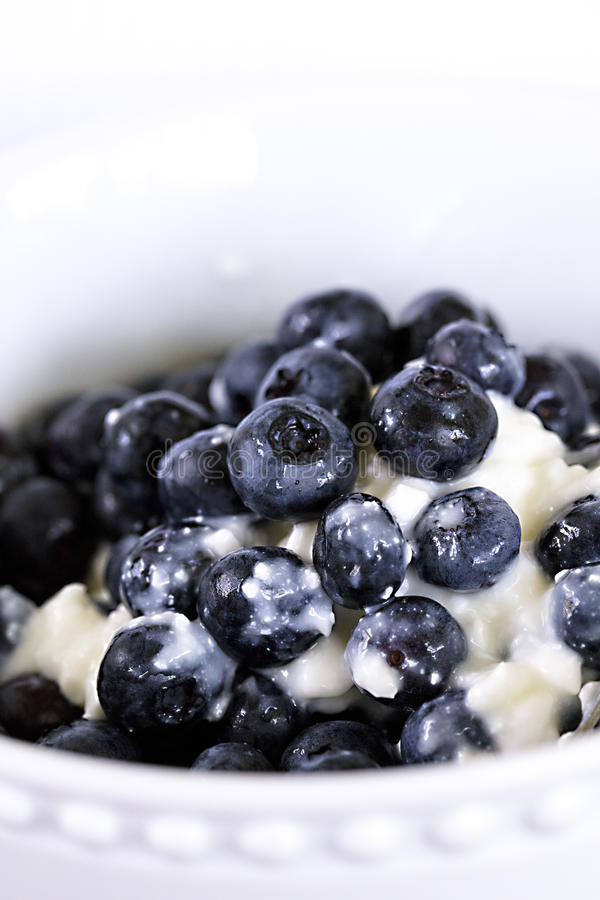 蓝莓和酸奶干酪在一个白色碗 免版税库存照片