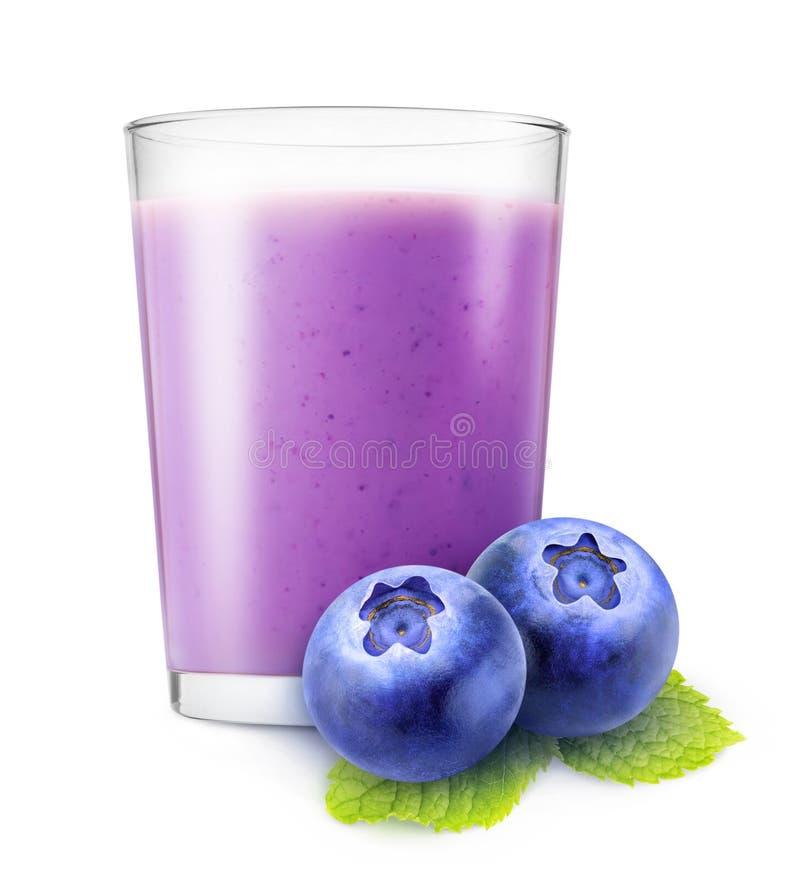 蓝莓圆滑的人 库存照片