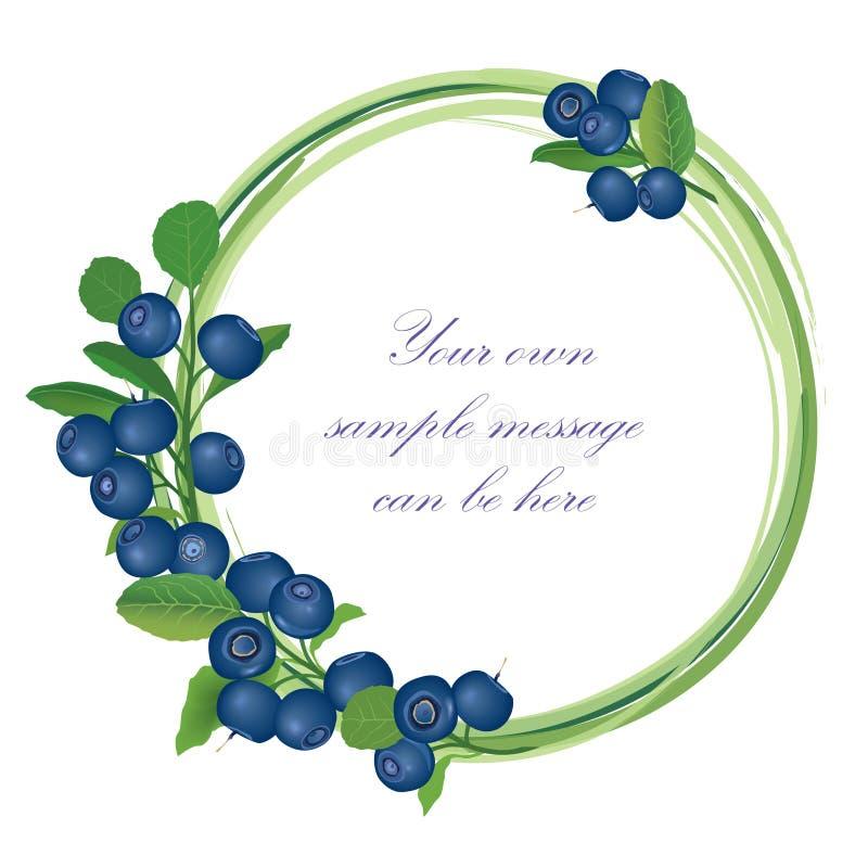 蓝莓在白色背景隔绝的框架集合。 向量例证