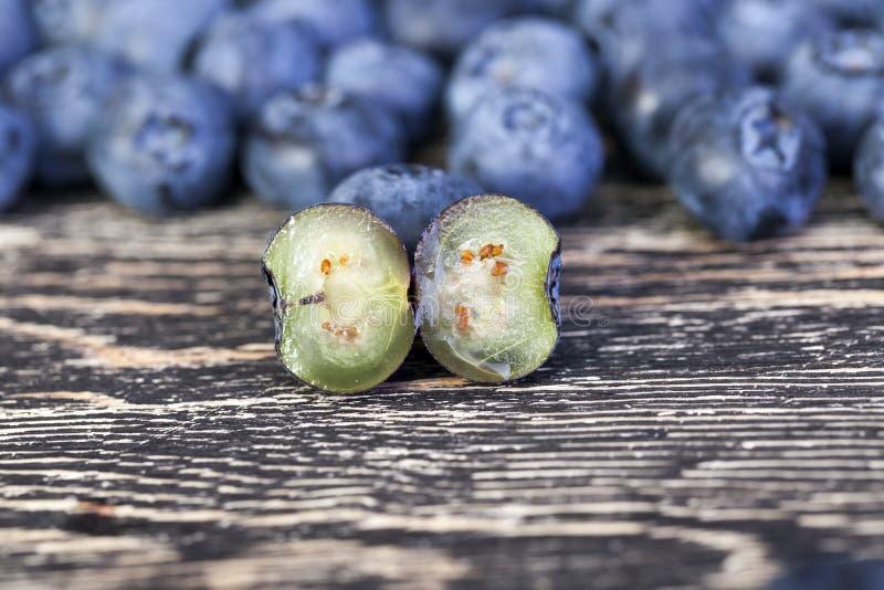 蓝莓容易的编辑eps8新组例证查出组织的甜白色 库存图片