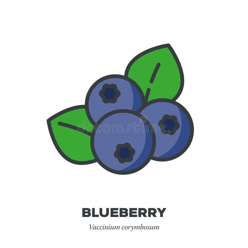 蓝莓果子象,填装了概述样式传染媒介 向量例证