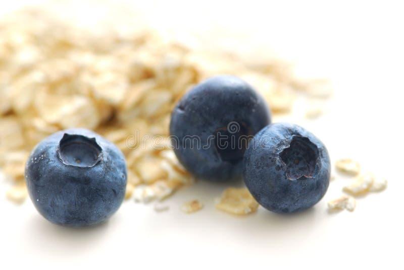 蓝莓燕麦 免版税库存照片