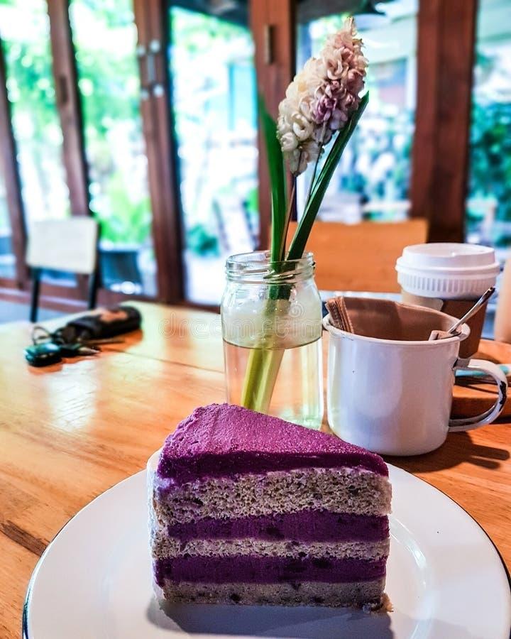 蓝莓牛奶蛋糕 库存照片