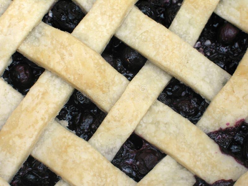 蓝莓特写镜头格子饼顶层 库存图片