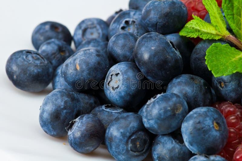 蓝莓留下造币厂的莓 库存图片