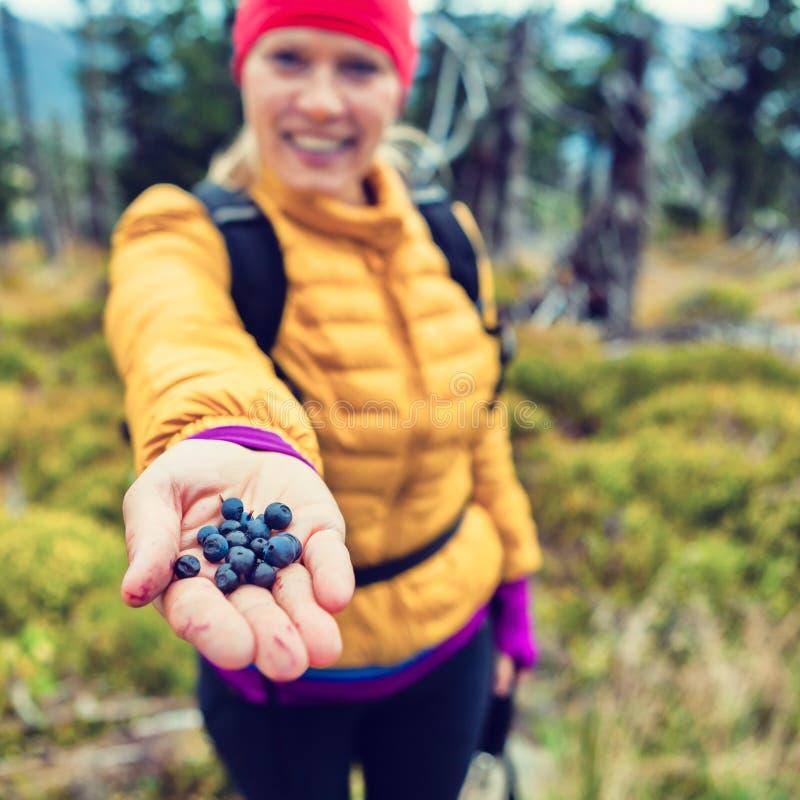 给蓝莓的妇女手在森林里 免版税库存照片