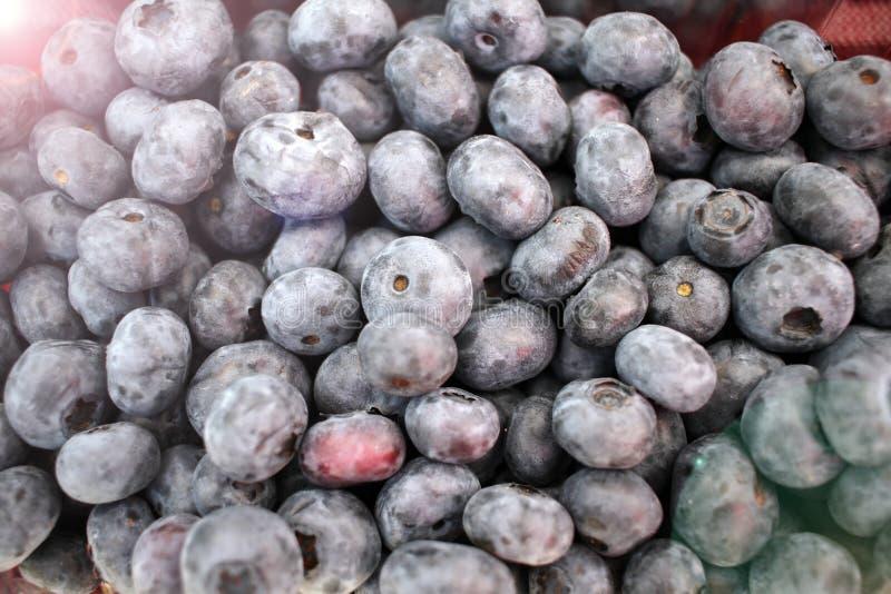?? 蓝莓背景纹理 果子充分的框架  维生素和饮食概念 E r 免版税库存图片