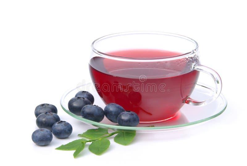 蓝莓茶 库存图片