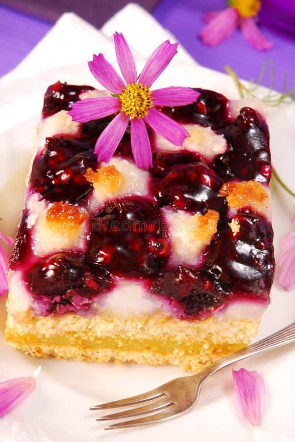 蓝莓蛋糕椰子 库存图片