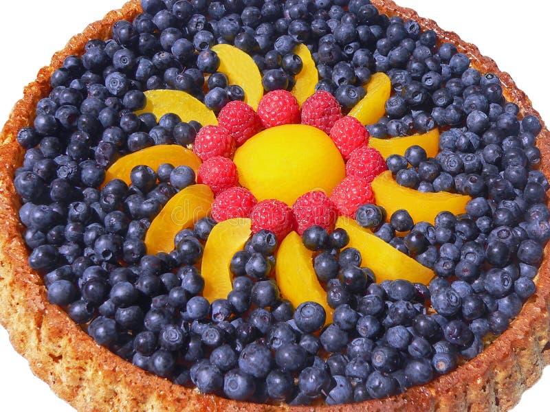 蓝莓蛋糕用莓和桃子 图库摄影