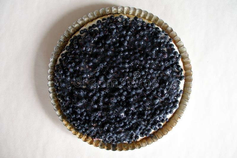 蓝莓蛋糕 图库摄影