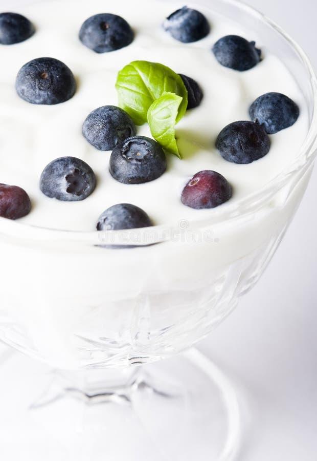 蓝莓酸奶 免版税库存图片