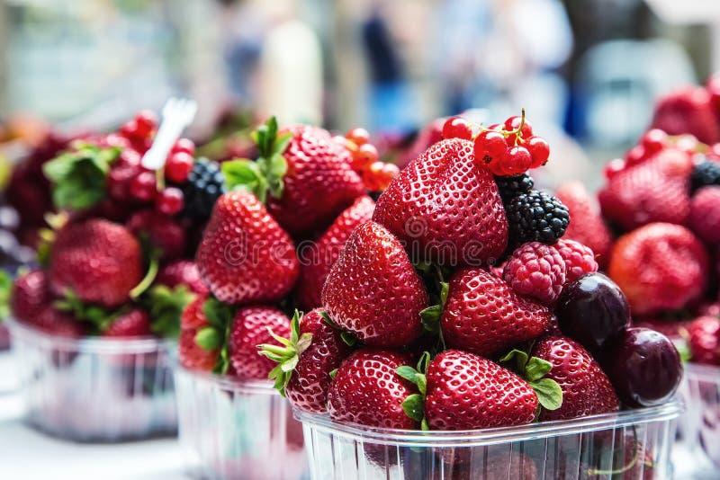 蓝莓,莓,草莓,樱桃森林结果实 从事园艺,农业、收获和森林概念 图库摄影