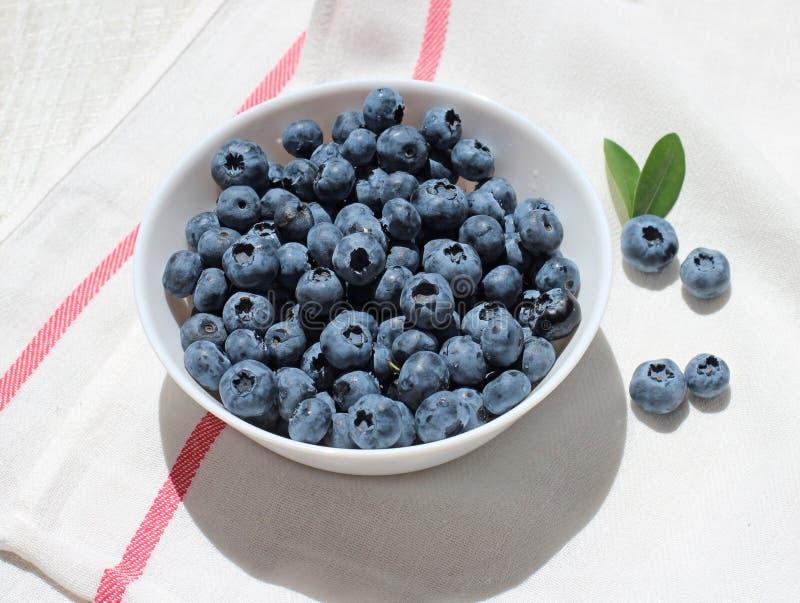 蓝莓8 图库摄影