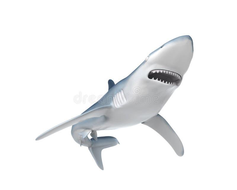 蓝鲨鱼 库存例证