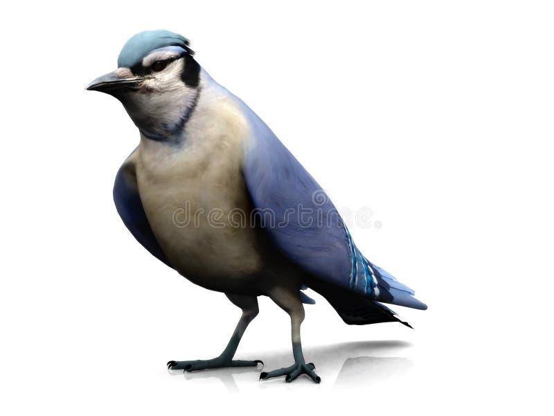 蓝鸟 向量例证