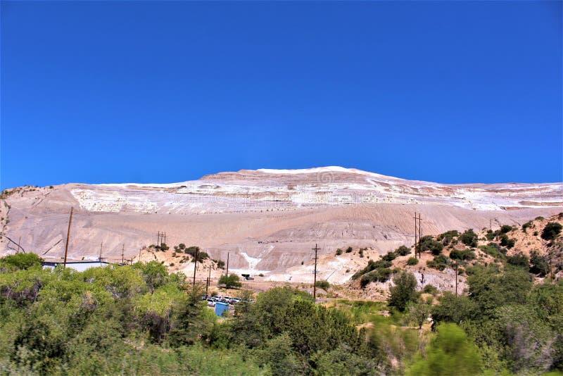 蓝鸫矿,Tonto国家森林,地球迈阿密区,希拉县,亚利桑那,美国 免版税库存图片
